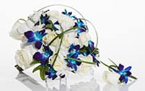 A round bridal bouquet and grooms boutonniere of roses mixed with contrasting tropical orchids