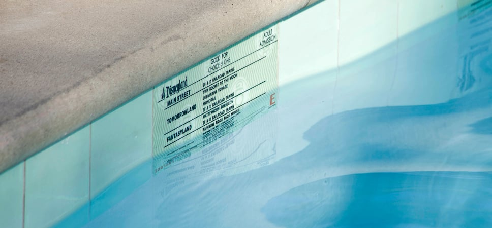 Close up on a large E-Ticket at the water's surface beneath the pool's edge.