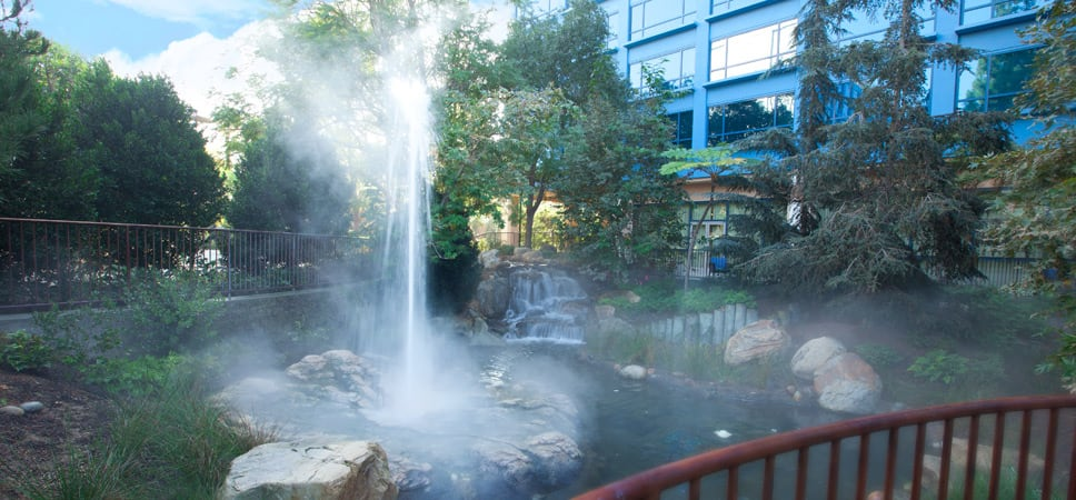 The recently renovated landscaped area contains a tiny geyser.