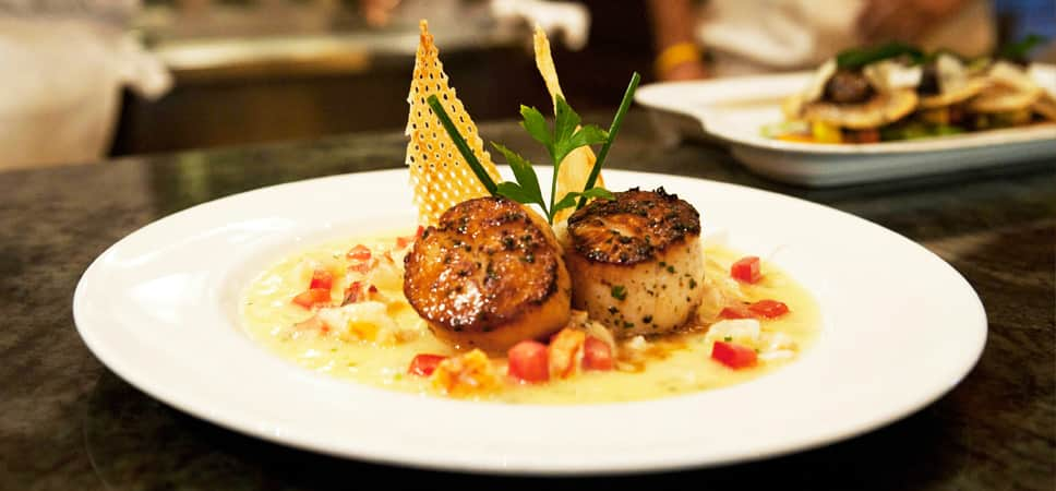 A plate of gorgeous scallops