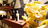 A gorgeous orchid decorates the Mandara Spa.