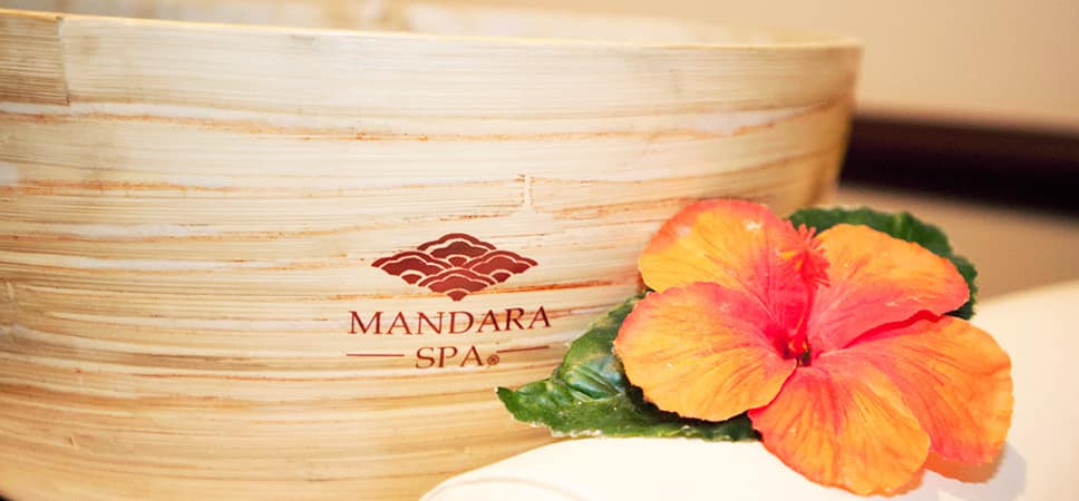 A bowl printed with the Mandara Spa logo