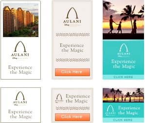 aulani marketing report Members of the company's marketing and operations team, as well as  fla, franchisees report increases in sales revenue, growth, customer approval.