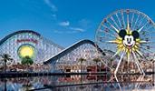 California Screamin and Mickeys Fun Wheel at Disney California Adventure Park