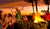 Hawaiian-style Group Excursions