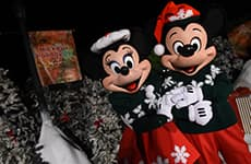 Mickey Mouse and Minnie Mouse at Mickey's Holiday 5K at Disney's Animal Kingdom Theme Park