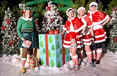 Runners dressed in holiday costumes at Mickey's Holiday 5K at Disney's Animal Kingdom Theme Park