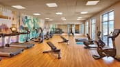 The fitness centre features a row of treadmills, life cycles, weights and other workout equipment