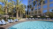 Tumbonas y muchas variedades de palmeras bordean la piscina en Hyatt Regency Orange County