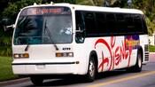 """Un autobús blanco que dice """"Transporte de Disney"""" al costado y el destino """"Hollywood Studios"""" en la ventana delantera"""