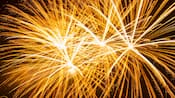 Des feux d'artifice éclairant le ciel la nuit