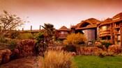 View of the savanna at Disney's Animal Kingdom Villa – Jambo House