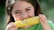 A young girl eats corn on the cob