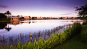 Irises blooming on the shoreline of the lake at Disney's Coronado Springs Resort