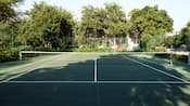 View of a tennis court fringed by trees