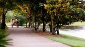 Une calèche et son conducteur roulant le long d'un chemin boisé