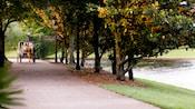 Un caballo y coche en un sendero rodeado de árboles en los terrenos de Disney's Port Orleans – Riverside
