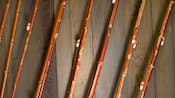 Close-up of fishing poles standing against a wooden wall