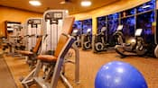 A row of weight-lifting equipment in front of a row of exercise bikes