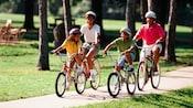 Familia de 4 con cascos y en bicicleta en un camino de hormigón