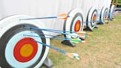 5 archery targets, each with a number of arrows stuck in them