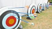 5 blancos de arquería, cada uno con varias flechas clavadas