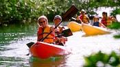 Kayakers paddling up a tree-lined riverbank