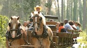 Dozens of smiling Guests ride in the back of an Old West-style wagon pulled by 2 horses
