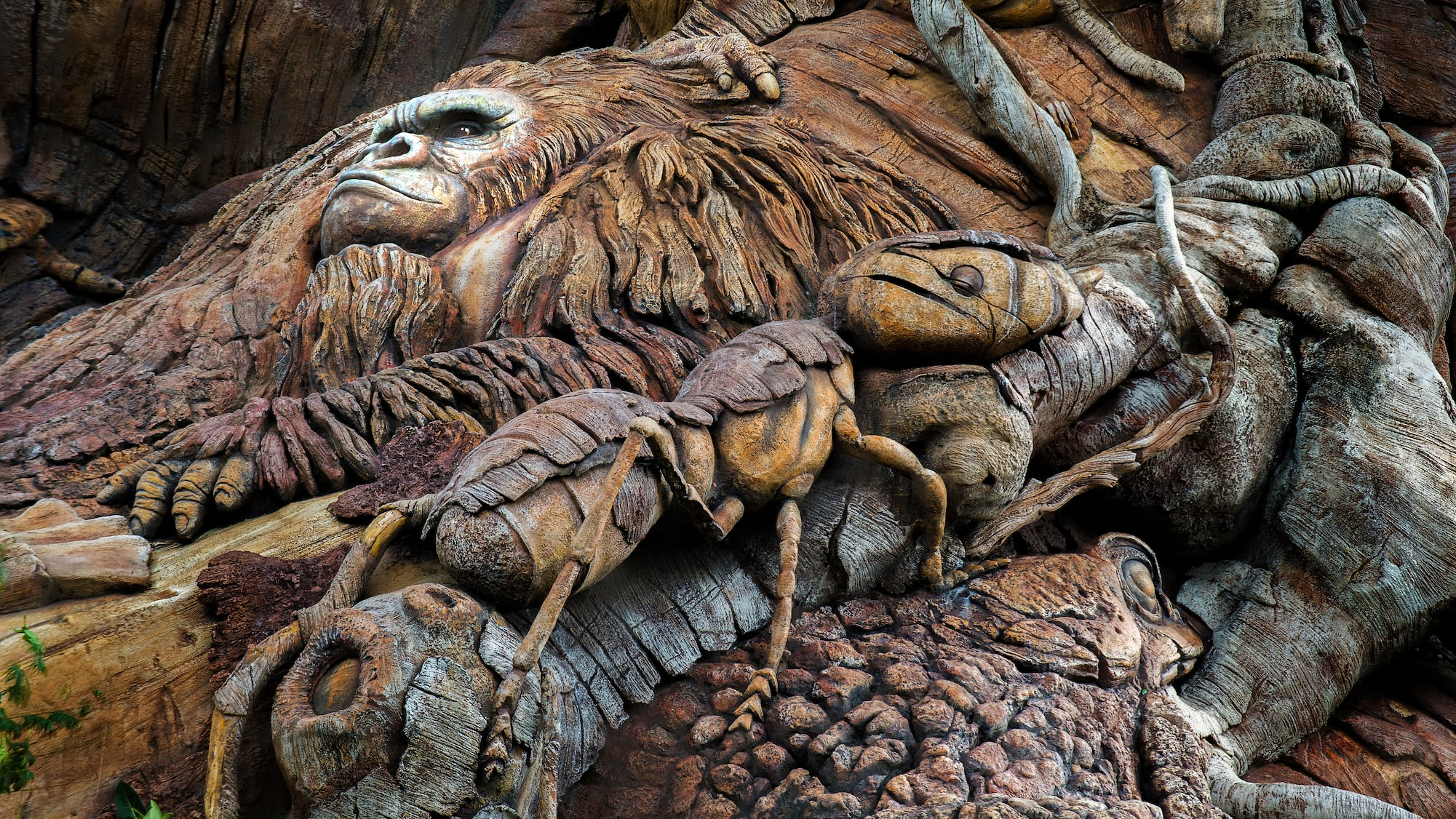 Tree Of Life Animal Kingdom Attractions Walt Disney World Resort