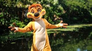 Timon de The Lion King chama para um abraço com um gesto