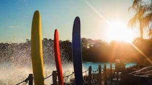 Three surfboards stand upright next to Disney's Typhoon Lagoon Surf Pool
