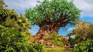 Tree of Life, a emblemática peça central do Disney's Animal Kingdom Park, magnífica sob o céu diurno
