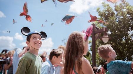 Un grupo de niños y adultos observan loros en el cielo