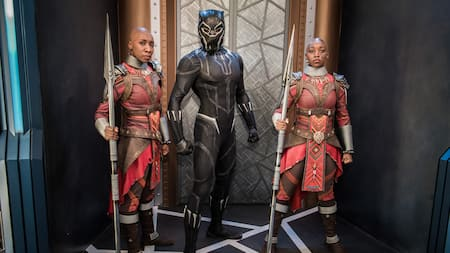 Black Panther and the Dora Milaje
