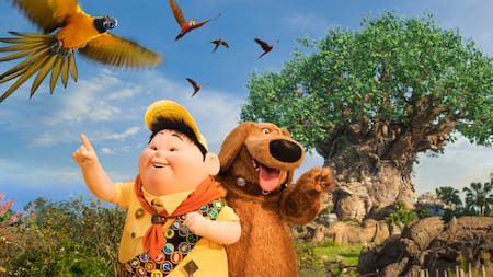 Russell and Dug look at flying parrots near the Tree of Life
