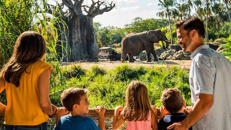 A mom, dad and their 3 kids watching an elephant on the savanna at Disney's Animal Kingdom park