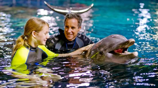 Epcot Seas Adventures – Dolphins in Depth