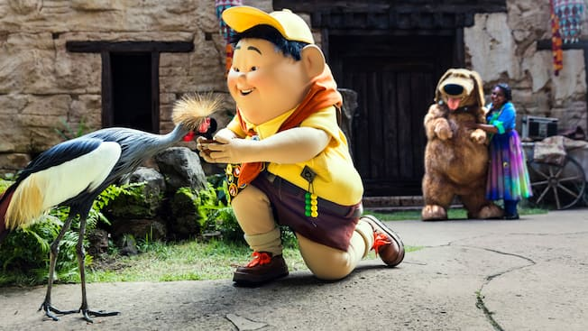 Russell from the Disney film Up bending down on one knee to feed an exotic bird