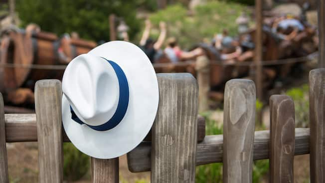 A fedora rests on a fence near a roller coaster