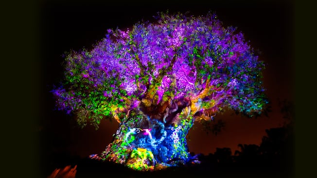 The Tree of Life awakens at nighttime with vibrant lights, animal projections and special effects