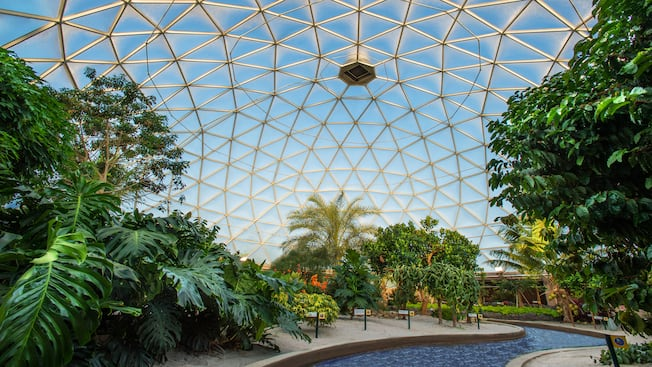 The Tropics Greenhouse, a living laboratory and section of the Living with the Land attraction