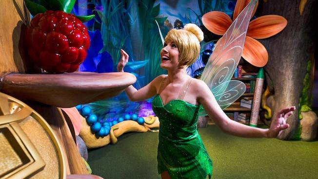 Tinker Bell busca con entusiasmo en la copa del árbol