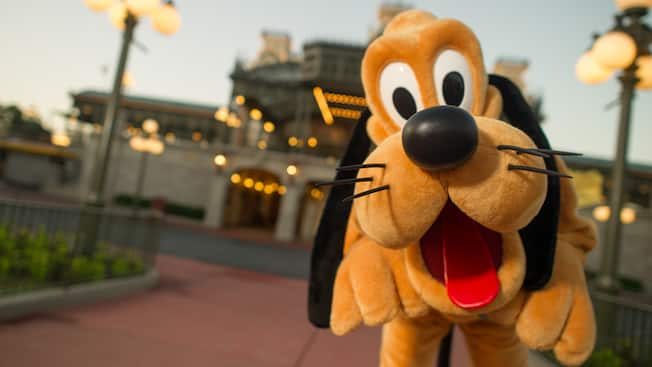 Um Pluto pulando em Town Square na Main Street, U.S.A. no Magic Kingdom Park
