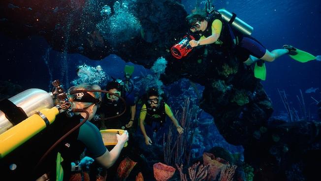 Clientes vestindo equipamentos de MERGULHO nadam sob um arco de pedra em um ambiente marítimo tropical