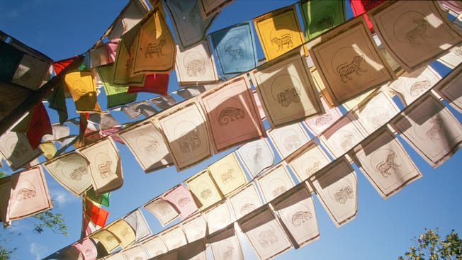 Múltiples hileras de banderines con animales de la jungla se entrecruzan por el aire