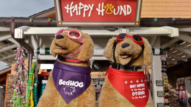 Dois cães de pelúcia usam acessórios como óculos de sol, coleira e lenços de pescoço no exterior da Happy Hound