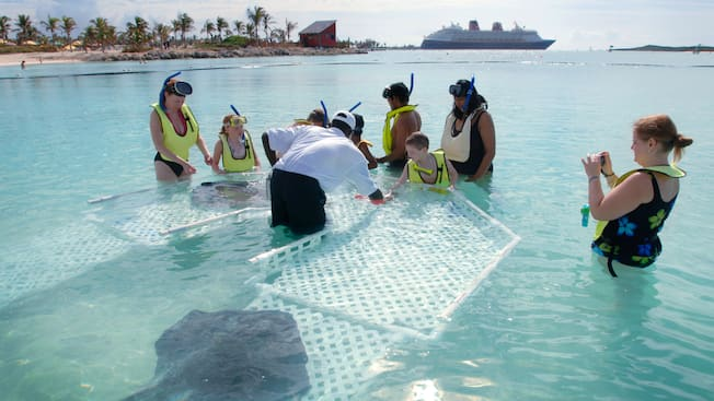Children and their parents gather around a shallow water stingray habitat to interact with the animals