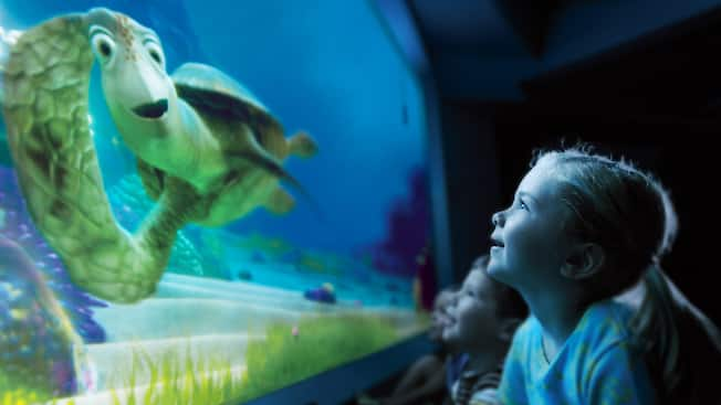 Turtle Talk with Crush | Epcot Attractions | Walt Disney ...