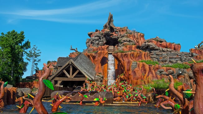 Splash Mountain Ride Walt Disney World Resort