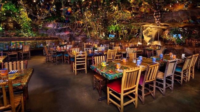 Rainforest Cafe Animal Kingdom | Walt Disney World Resort on science cafe, halloween cafe, corner bakery cafe, jungle cafe, zoo cafe, aquarium cafe, blue cafe, vegas cafe, sunrise cafe, sandella's flatbread cafe, hardrock cafe, animal cafe, first hard rock cafe, london cafe, new hard rock cafe, disney cafe, t-rex cafe, island cafe, space cafe, urbane cafe,